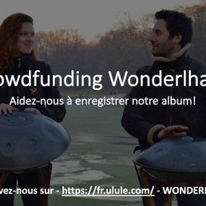 crowdfunding wonderlhang
